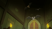 Bats flying through the library's secret passage EGFF
