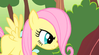 Fluttershy filly looking stern S01E23