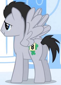 Lucky Clover Pegasus ID S01E16.png