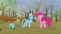 Rainbow -is so cute- S5E5