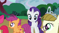 Apple Bloom, Scootaloo, and Zipporwhill go to play S7E6