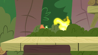 Gecko's fire burning nearby bushes S9E18