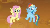 "Rainbow Dash ""gotcha!"" S9E2"