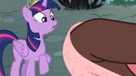 S04E01 Discord wyciera się ręcznikiem w niebezpiecznie bliskiej odległości od zaskoczonej Twilight