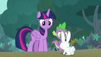 Twilight and Spike run into 'Angel Bunny' S9E18