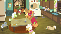 Apple family and cats in the kitchen S9E10