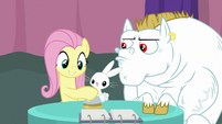 Fluttershy ringing the bell S9E16