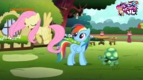 My_Little_Pony_FiM_(Dutch)_May_the_best_pet_win