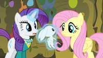 Rarity levitating Angel in front of Fluttershy S4E14