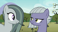 Marble Pie agreeing with Limestone Pie S8E3