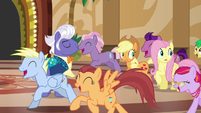 Ponies gallop past AJ, Fluttershy, and Gladmane S6E20