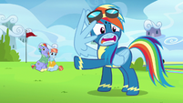 """Rainbow Dash """"you've invited a whole lot of crazy"""" S7E7"""