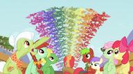 S03E08 Nietoperze owocowe