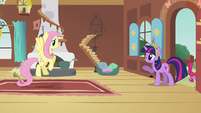 """Twilight and Fluttershy """"you sure you're okay with this?"""" S03E10"""