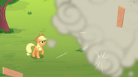 AJ watches Rainbow work from the ground S8E9