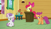 Apple Bloom sees that her friends are staring at their cutie marks S6E4.png