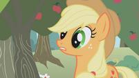 Applejack wakes up S1E04