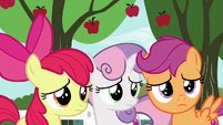 Cutie Mark Crusaders watch Gabby leave S6E19
