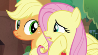 "Fluttershy ""maybe they don't understand"" S8E23"