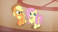 """Fluttershy """"move in and take over his resort"""" S6E20"""