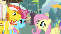 """Fluttershy """"went to see them gathering their pollen"""" S4E16"""