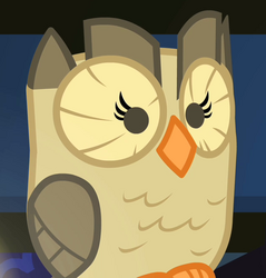 Owlowiscious.png