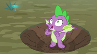 Spike worried about Rarity and Zecora S8E11