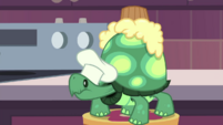 Tank with a cupcake on his shell EGDS30