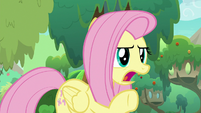 "Fluttershy arguing ""yes, it is!"" S8E23"