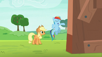 Rainbow Dash presenting her apple shed S8E9