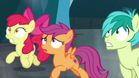 Sandbar and CMC race to save Sweetie Belle S8E26