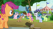 Thunderlane and foals looking at Scootaloo S7E21