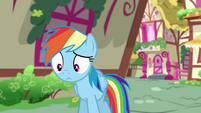 Equestrian Rainbow surprised by Stormfeather's fainting EGSB