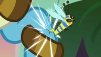 Flash bee stings Meadowbrook's hoof S7E20