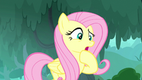 """Fluttershy """"at least no animal is suffering"""" S8E18"""