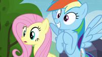 Fluttershy and Rainbow Dash hopeful S4E22