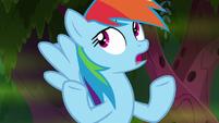 """Rainbow Dash """"it's all right, I guess"""" S8E17"""