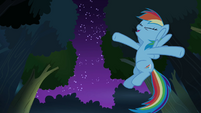 Rainbow Dash geeking out S4E04