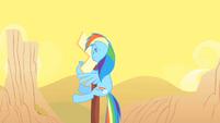 Rainbow Dash hits a sign S01E21