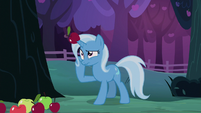 Trixie dizzy with an apple on her horn S7E24