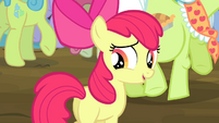 Apple Bloom -aren't you curious-- S4E20