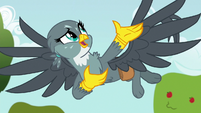 "Gabby ""how you help ponies"" S6E19"