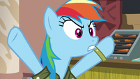 "Rainbow Dash ""if you hate Daring Do so much?"" S6E13"
