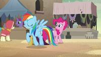 Rainbow Dash approaching a merchant pony S7E18