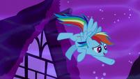"""Rainbow Dash emphasizes """"...in Ponyville!"""" S5E13"""