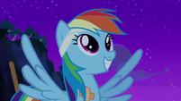 Rainbow Dash smiling happily S6E7