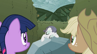 "Rarity ""This big beautiful bedazzling rock"" S2E01"