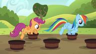 S05E17 Rainbow i Scootaloo pokonują bieg przez wiadra