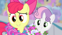 Apple Bloom and Sweetie Belle --what-- S4E05