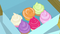 Box of colorful cupcakes S8E2